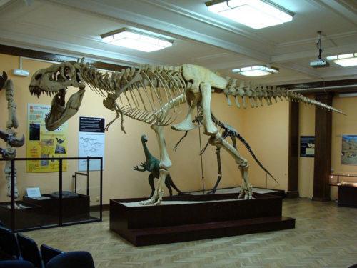 タルボサウルス ティラノサウルス 違い