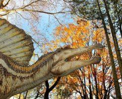 スピノサウルス 歯 化石 値段