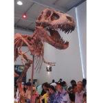恐竜タルボサウルスってどんな生き物だったの!?