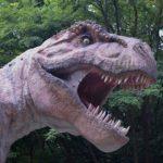ティラノサウルスって最強なの?弱点とは?