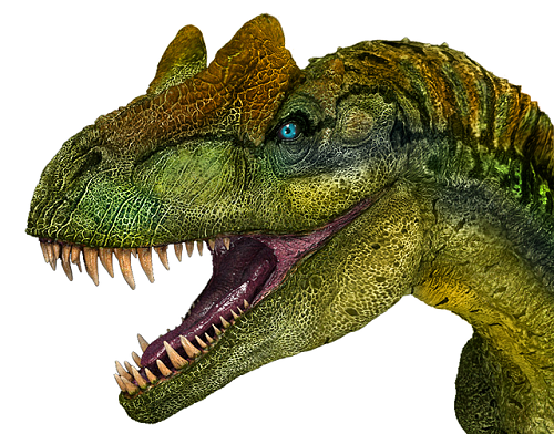 アロサウルス 目 位置