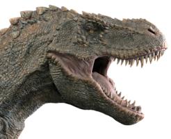 ティラノサウルス tレックス 違い