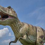 ティラノサウルスとスピノサウルス、アロサウルスの大きさ等の比較について