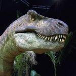 ティラノサウルスの生息地や分布について