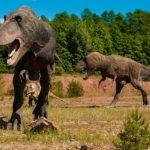 アロサウルスの前足はどのように使われていた?指は何本!?