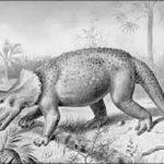 トリケラトプスは何を餌にしていたの!?