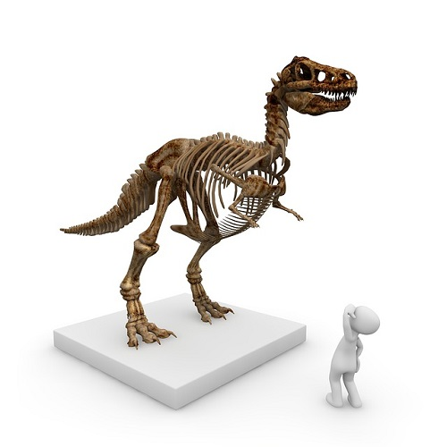ティラノサウルス 足跡 大きさ
