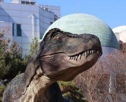 ティラノサウルス 名前 由来