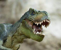 ティラノサウルス スー 大きさ