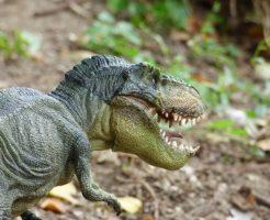 ティラノサウルス 卵 化石