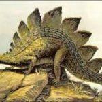 ステゴサウルスは草食恐竜だった?何を餌にしてたの?