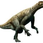 恐竜イグアノドンの特徴。親指はどのように使ってたの?