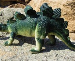 ステゴサウルス 背中 役割