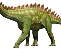 ステゴサウルス 名前 由来 意味