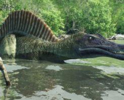 スピノサウルス 歯 特徴 何本
