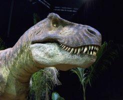 ティラノサウルス 生息地