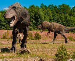 アロサウルス ティラノサウルス 前足