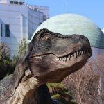 ティラノサウルスの名前の由来とは