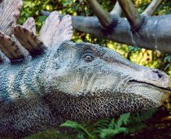ステゴサウルス 脳 大きさ