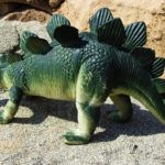 ステゴサウルスの背中の板の役割について